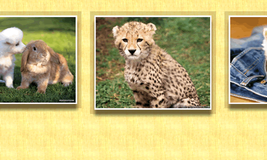 Cute little animal images for puzzles