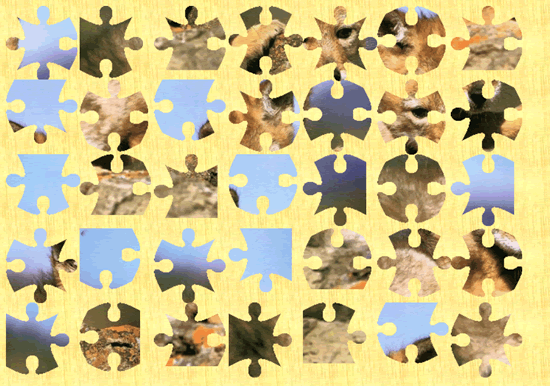 The most difficult level for a puzzle, lots of small pieces